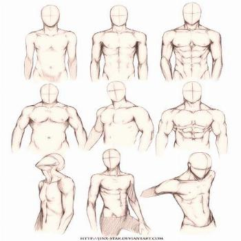 Drawing body reference male torso 39 Best ideas