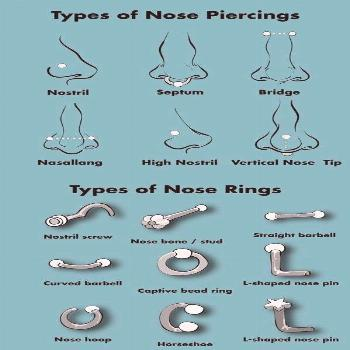 Types of Nose Piercings & Types of Nose Rings Info Graphic Chart / Diagram |